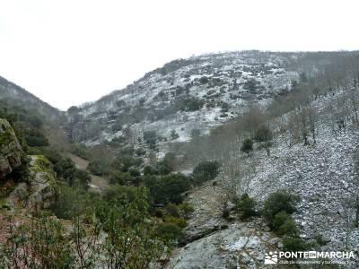 Pico Rocigalgo;Cascada Chorro,Cabañeros; la hiruela raquetas de nieve amigos madrid salir por madri